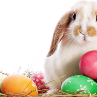 Easter is fast approaching awesome gift ideas for your clients easter traditions1g negle Gallery